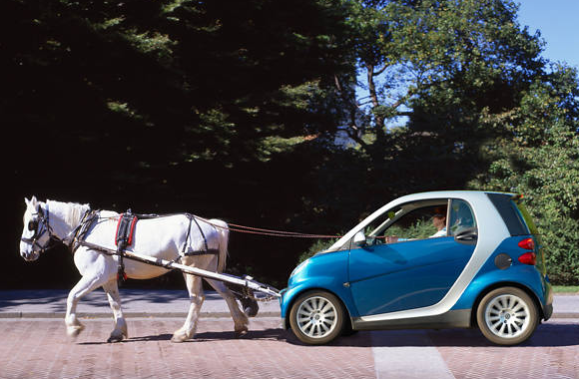 horse-pulling-smart-car-shopped-or-not.img_assist_custom.png